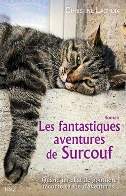 LES FANTASTIQUES AVENTURES DE SURCOUF de Christine LACROIX