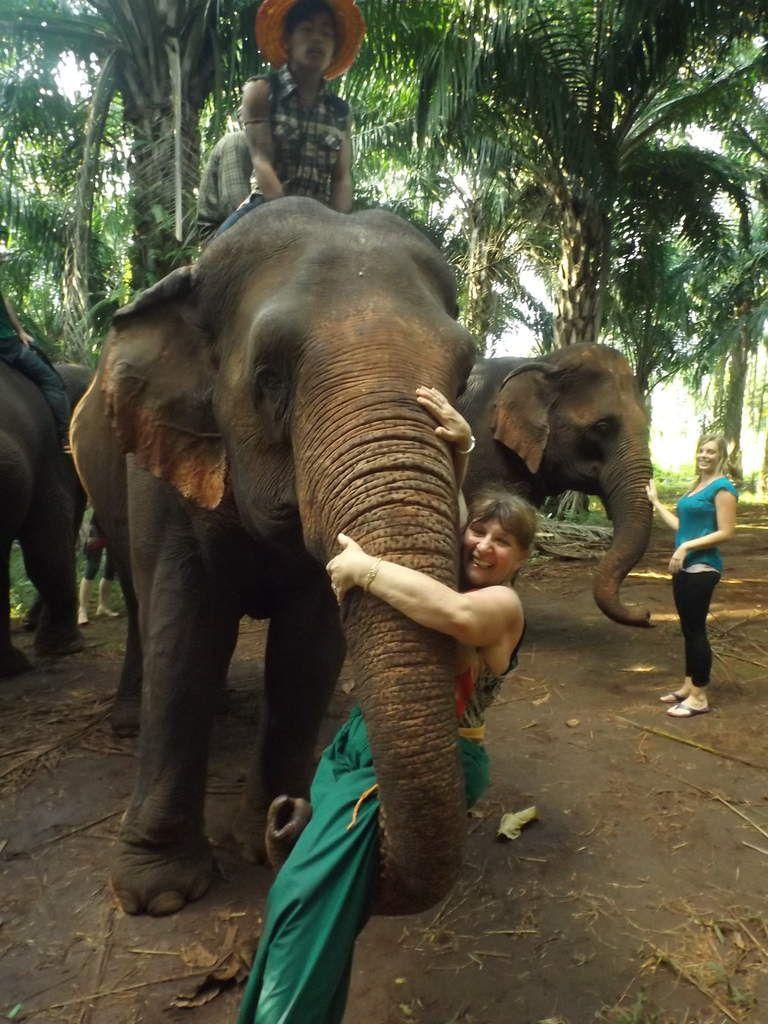 RENCONTRE AVEC LES ELEPHANTS de GANESHAPARK -Thaïlande 2014