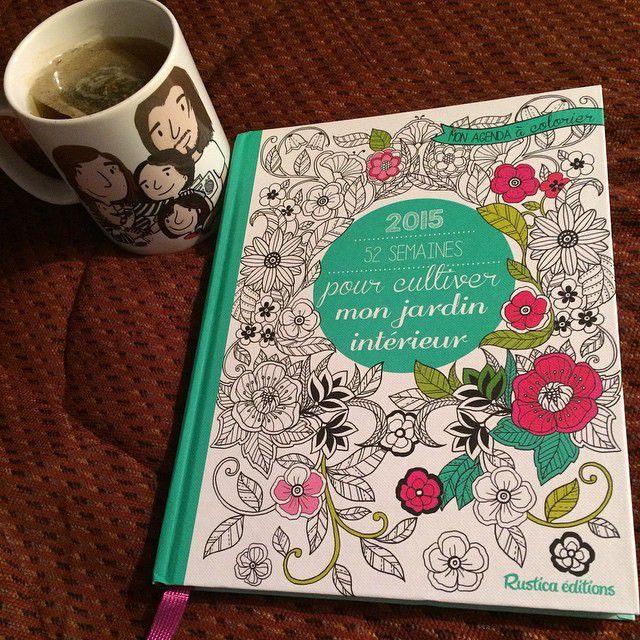 Mon agenda pour 2015 offert par ma chouette copine Marie Grain de Sel <3