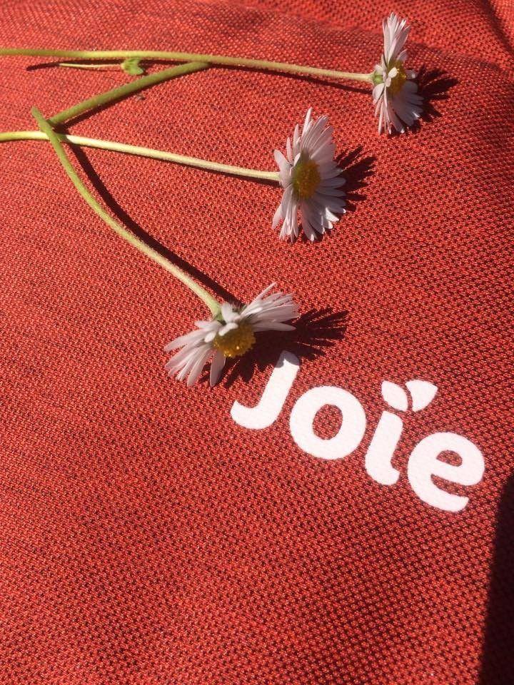 La poussette Crosster de Joie (test et avis)