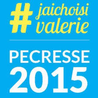 ACTUALITE : Elections régionales 2015