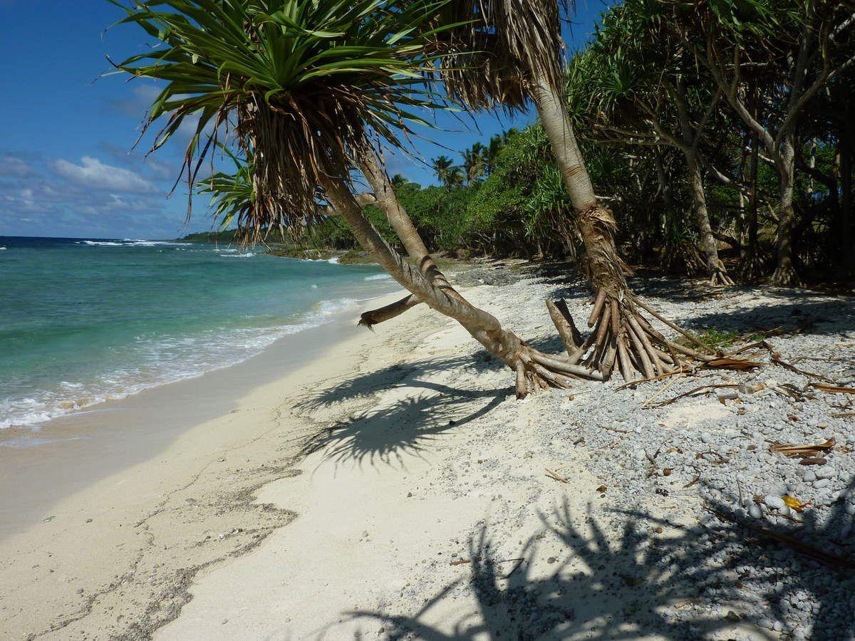 Sur Efaté l'ile ou se situe la Capitale Port Vila