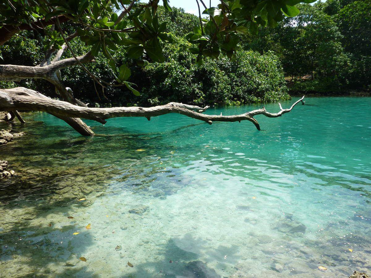 Le trou bleu. Se balancer avec une longue corde et plonger dans ces eaux turquoises ...wahoo....