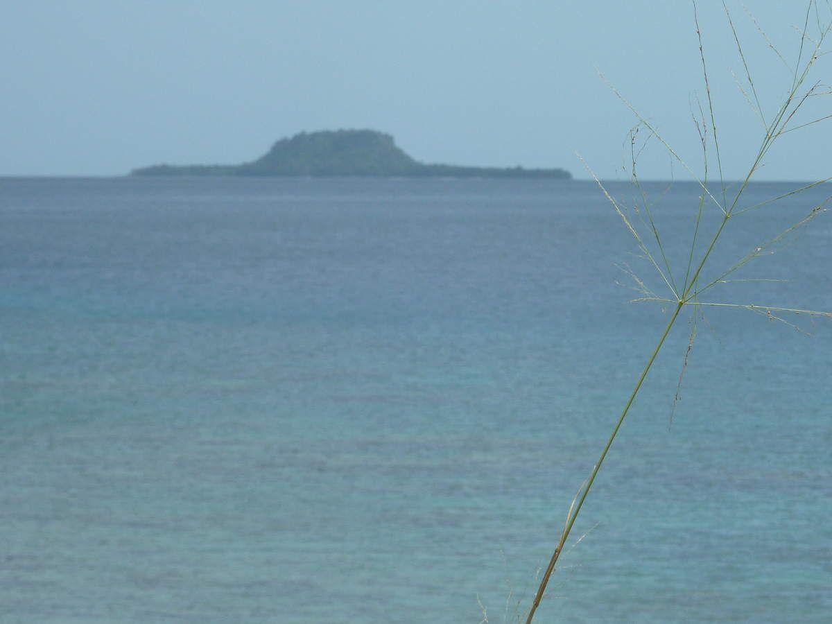 """Pirogue dans lesquelles les hommes vont à la pêche. Au loin """"Hat Island"""""""