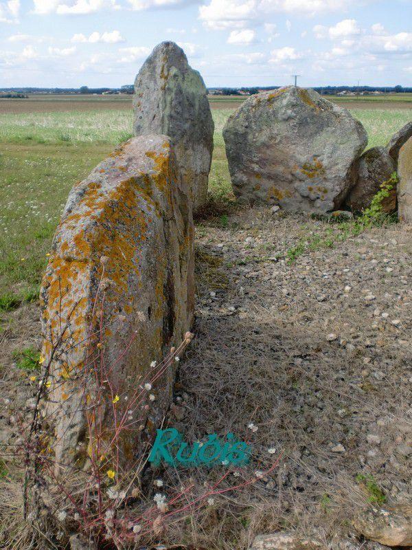 Dolmen du Gras du Chien ou II de la Pierre Levée de Puyraveau ou Puyravault, Saint Léger de Montbrun