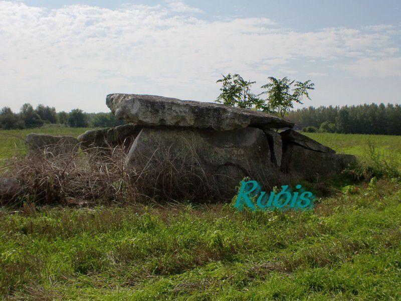 Dolmen de la Pierre Couverte de Beaupréau, Charcé-Ellier sur Aubrance