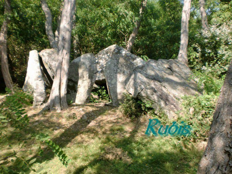 Dolmen A ou grand dolmen des Varennes de Cumeray ou des Pierres Cabrées, Le Thoureil