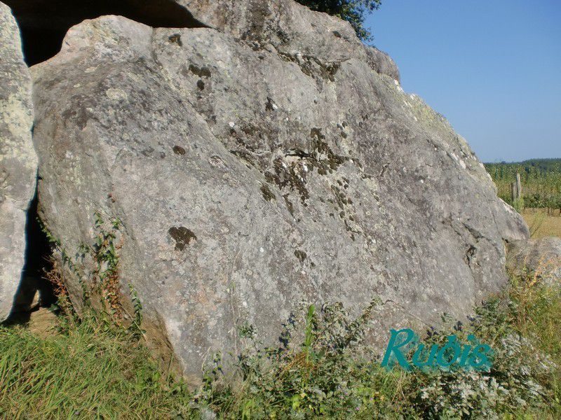 Dolmen de la Pierre Couverte de Saugré ou de Saugray, Denezé sous Doué