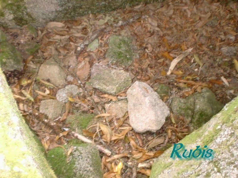 Dolmen de la Pierre Levée de Puy Chaud ou de Puychaud, Blond