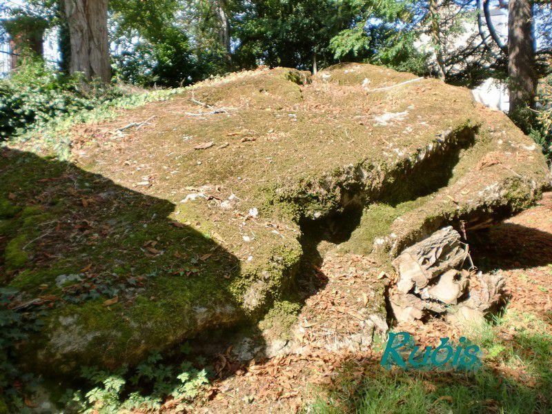 Dolmen du Pavé de Saint Lazare ou de Crouzilles, l'Île Bouchard