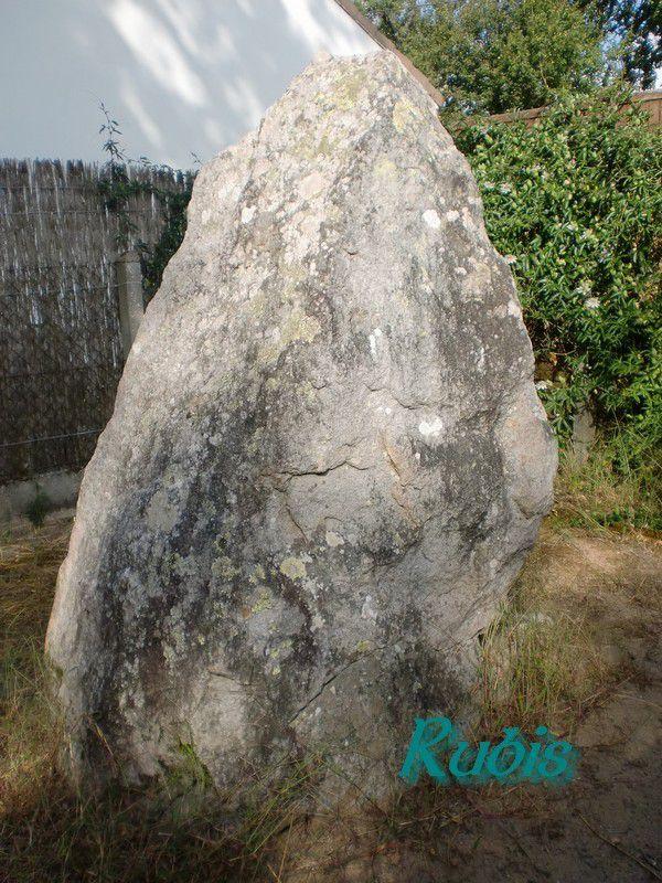 Menhir B des Pierres Couchées ou la Pierre de Couche, Saint Brevin les Pins