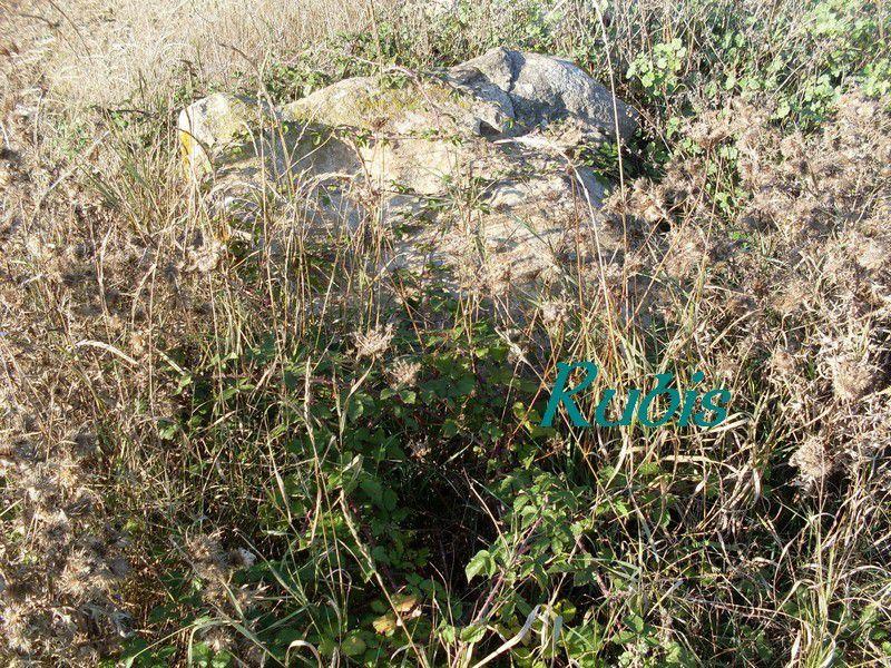 Menhir de la Pierre qui vire ou la Pierre du Russelet, Longeville sur Mer