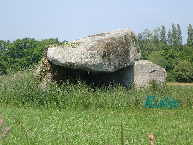 Dolmen de Kervin-Brigitte, Crac'h