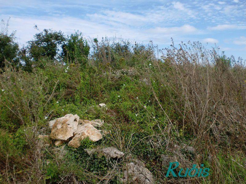 Dolmen A4 (ou D de la Pièce Grande), Chenon