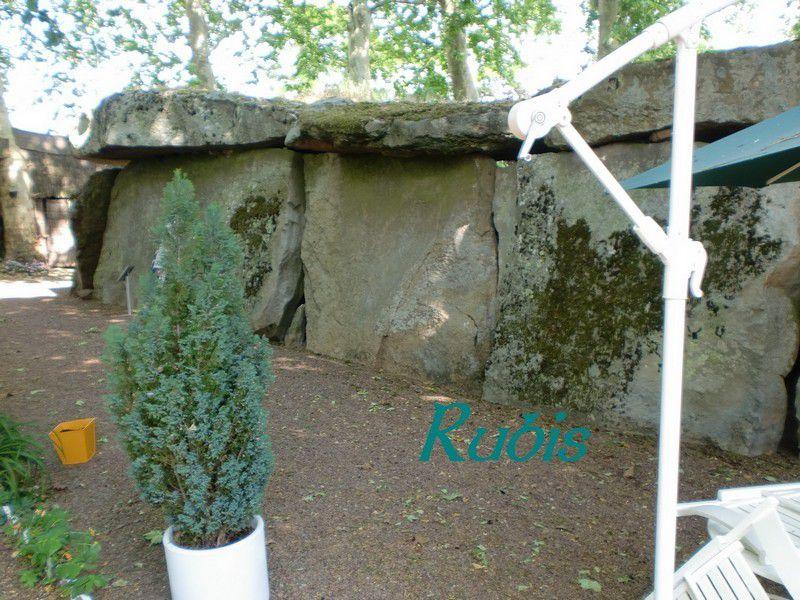 Grand dolmen de Bagneux ou Grande Pierre Couverte ou Grotte des fées ou Roche des Fées ou Tombeau des Goths ou Temple des Druides, Saumur