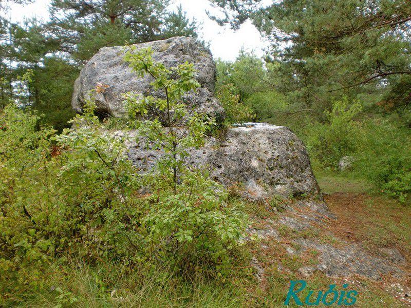 Mégalithe de la Peyre d'Ermale ou Peyre Dermale, Paussac et Saint Vivien