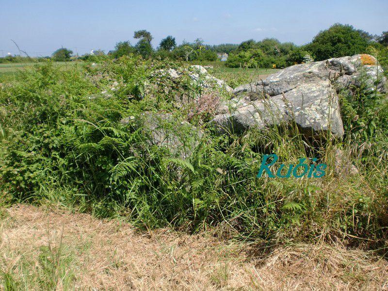 Dolmen de Kerangre ou Er-Roc'h, Erdeven