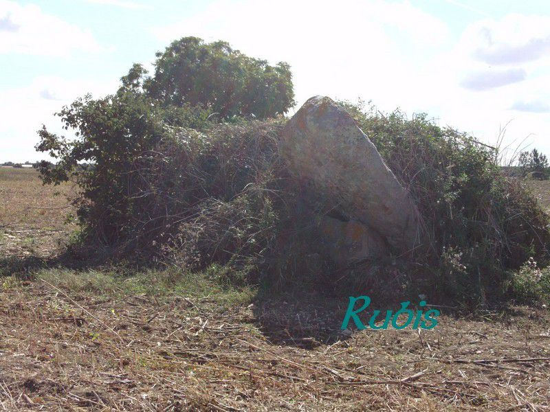 Dolmen d'Epennes ou Epeines, Bournand