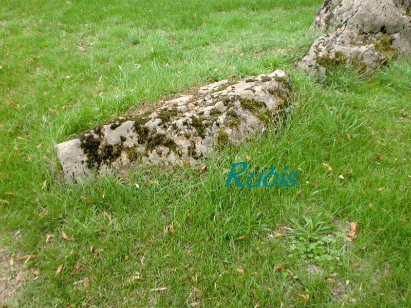Dolmen de la Pierre Folle, Thiré