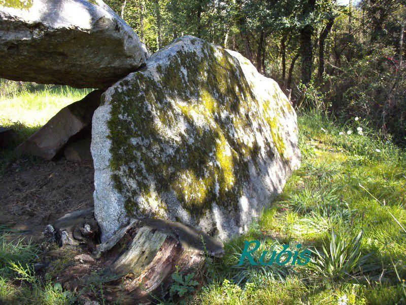 Dolmen de la Pierre Levée du Grand Gât, Moutiers sous Argenton