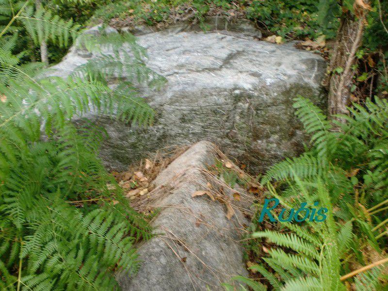 Dolmen de Tauzat ou de Thauzac, Massignac