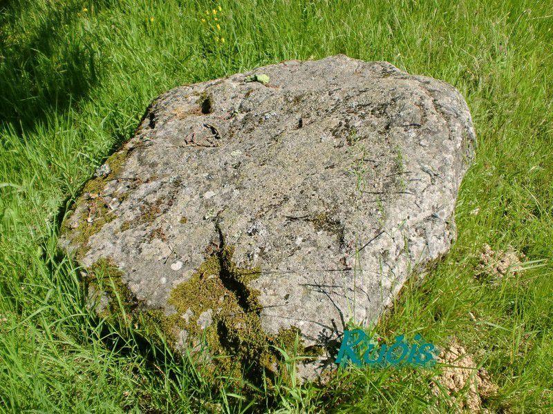 Menhirs des Platennes, Chauvé