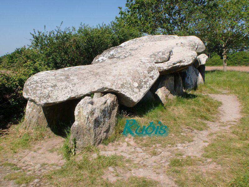 Allée couverte ou dolmen A de Kerbourg, Saint Lyphard