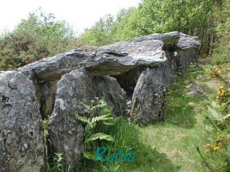 Allée couverte de la Grotte des Fées de Tréal our Rocher de Tréal, Saint Just