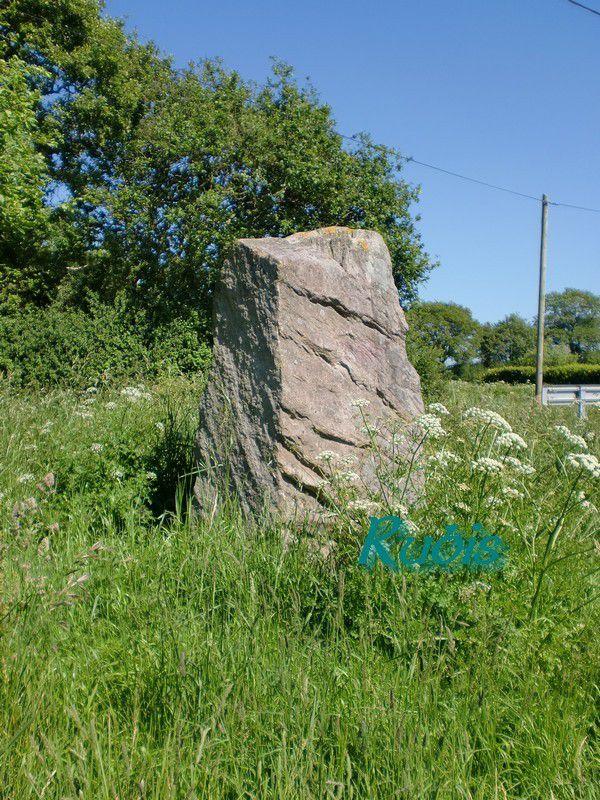 Menhir B de la Riveraie ou du Quarteron de la Riveraie ou Riverais, Saint Père en Retz