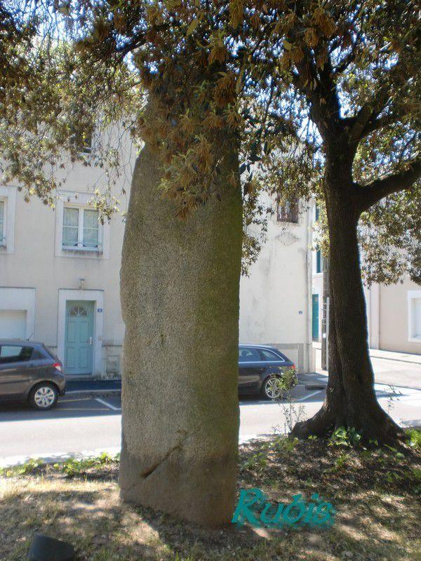 Menhir des Prés, Saint Nazaire