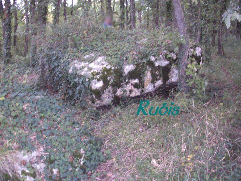 Dolmen de la Pierre à Pineau ou des Pierres, Oiron
