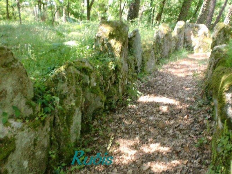 Allée couverte et coudée de Luffang-Tal-er-Roch, Crac'h