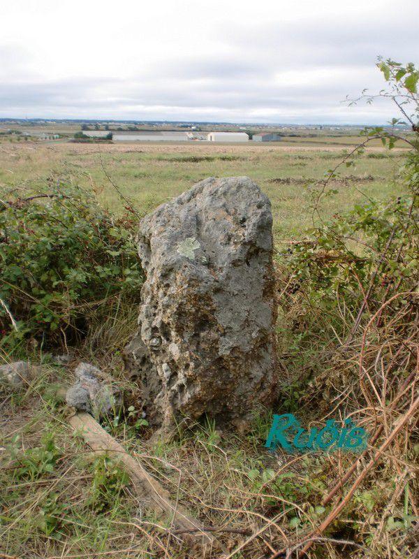Menhir de la Grosse Borne, Chaillevette