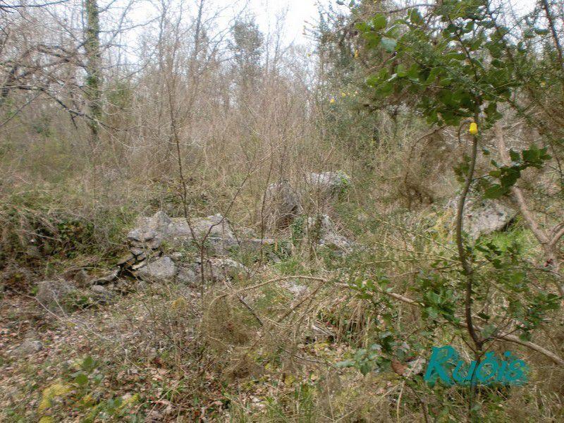 Dolmen du Bois de la Grosse Pierre, Sainte Radegonde