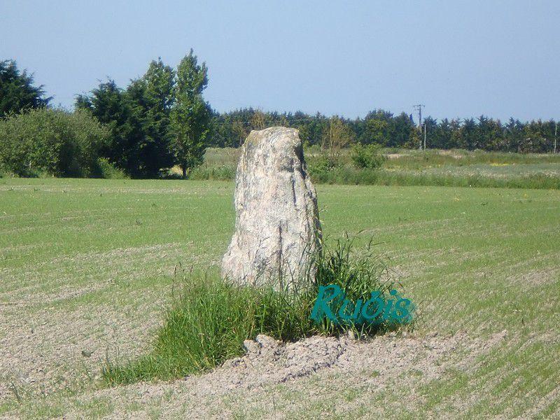 Dolmen de la Pierre de Saillé ou de Congor ou de Clos Saint Aubin ou de Pierre Levée ou du Clos de la Pierre, Guérande