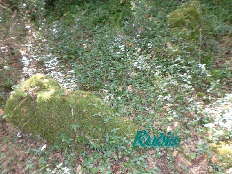 Dolmen de la Roche-Courbon, Saint Porchaire
