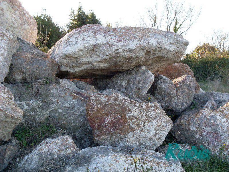 Dolmen du Sillery ou de la Pierre à Crève-Sot, Chaillevette