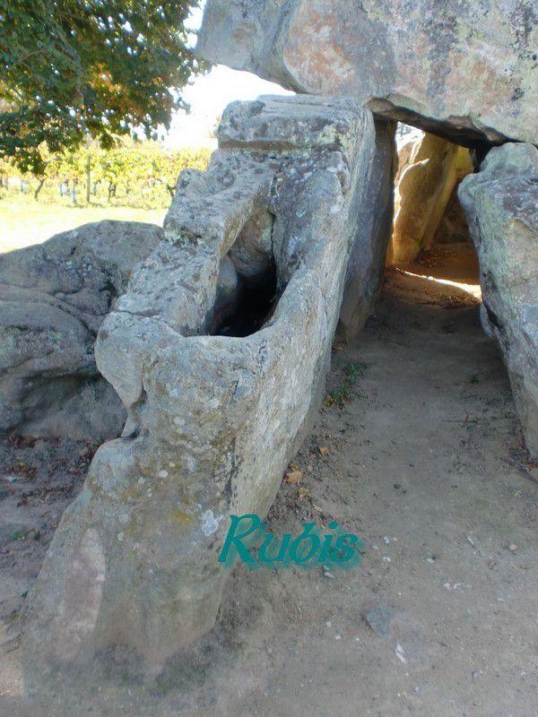Allée couverte et dolmen de la Pierre Folle, Montguyon