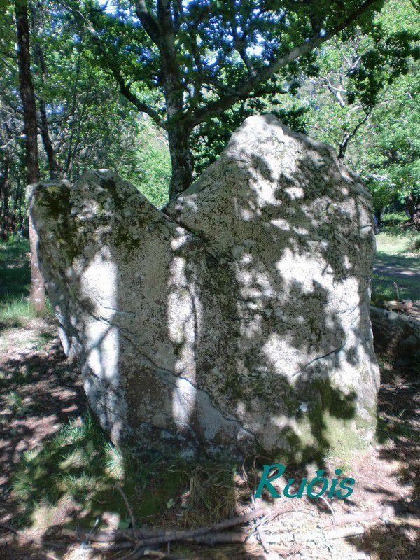 Alignements de la Chaise à César ou Coët-ar-Bei, Erdeven