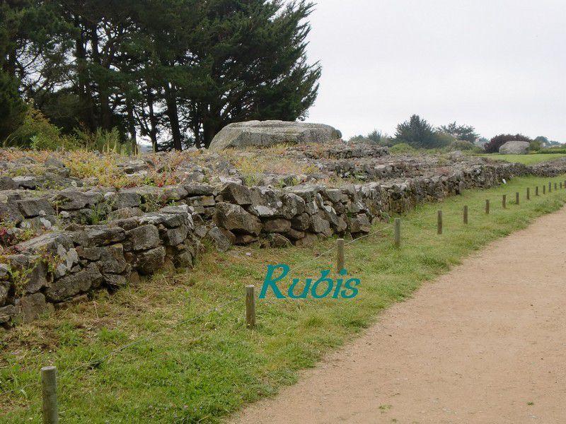 Tumulus de Men-er-Grah ou er-Vinglé, Locmariaquer
