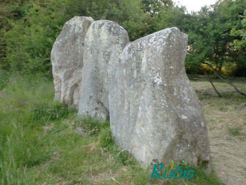 Alignements de la Table du Sacrifice de Kerzerho ou Géants de Kerzerho, Erdeven
