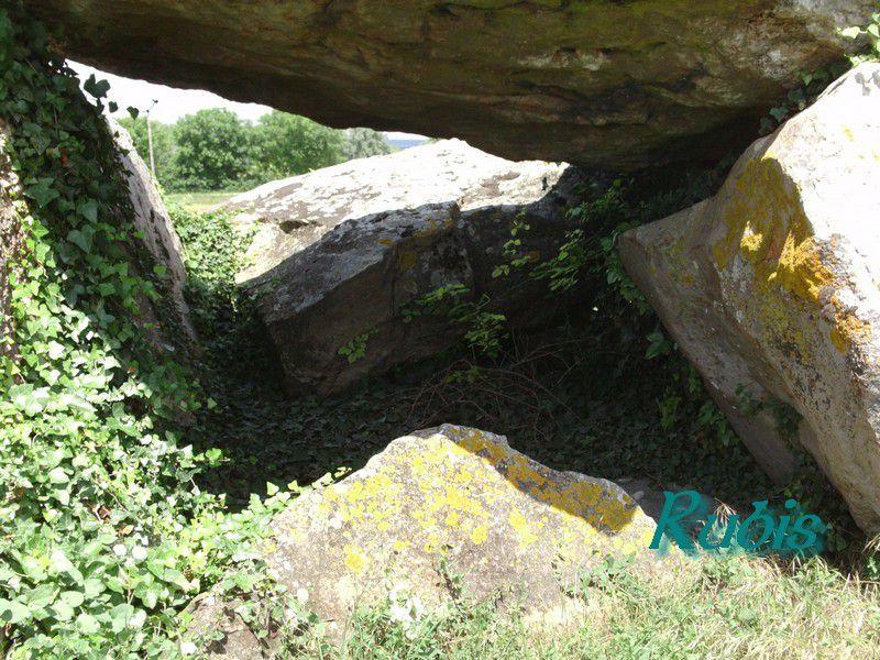 Dolmen de la Fontaine de Son I, Saint Léger de Montbrillais