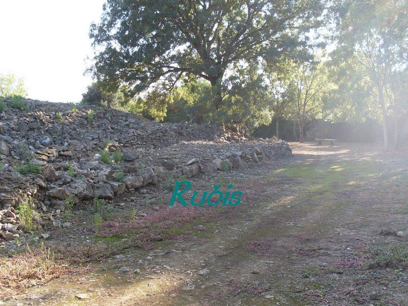 Cairn et dolmens du Pey (ou Pé) de Fontaine ou de l'Anguillé, Le Bernard