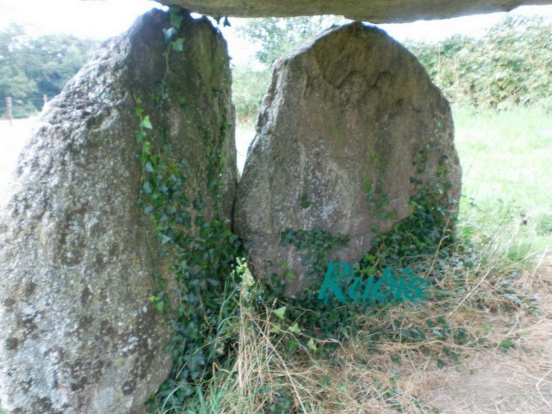 Dolmen de Bagnol ou de Pierre Levée, Fromental
