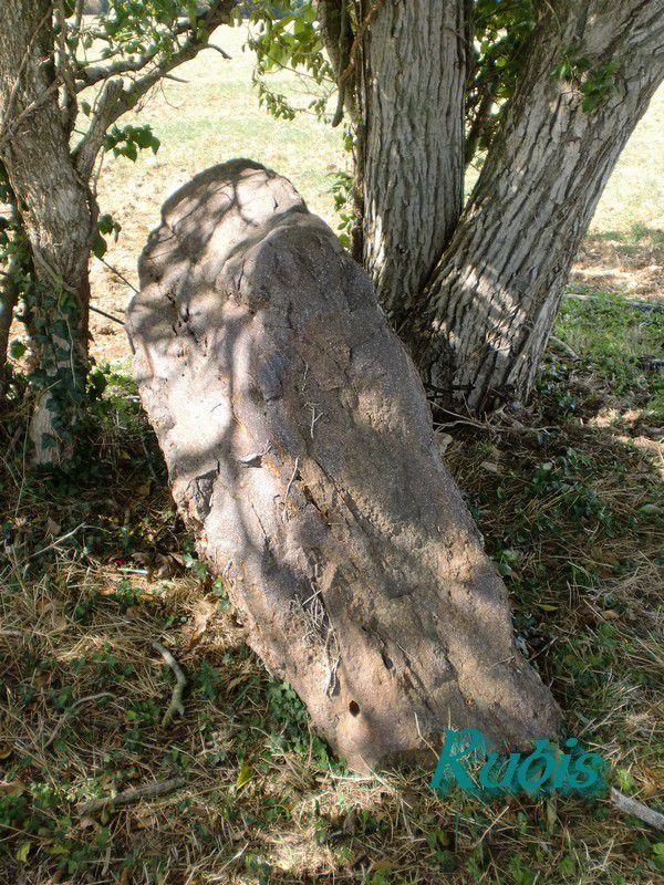 Dolmens A, B, C de Bel Air et dolmen du Clos Renard, Champigny le Sec