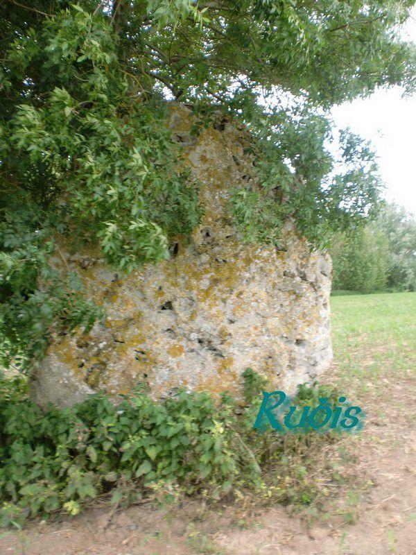 Menhir de la Grande Pierre de la Prée de Thouars, Montreuil-Bellay