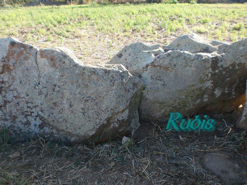Dolmen 3 ou C de Savatole ou allée couverte du Terrier de Savatole, Le Bernard