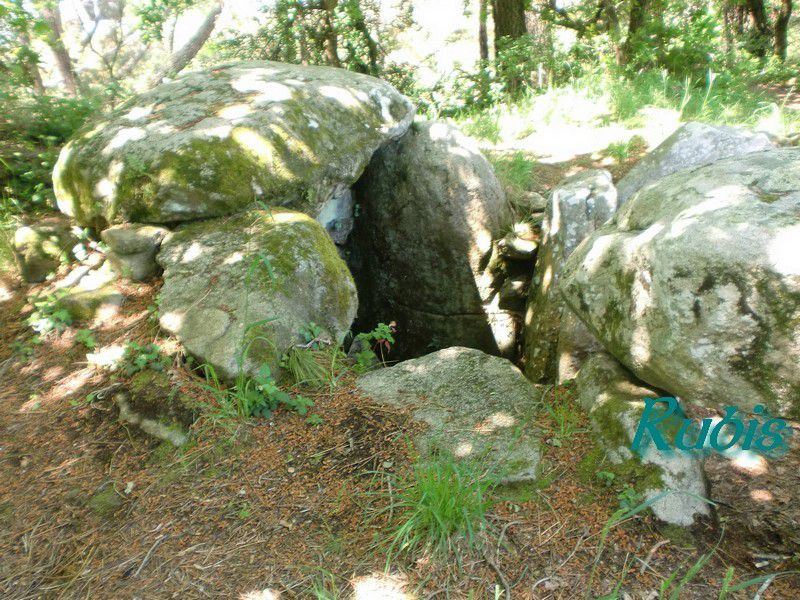 Dolmen de Kermarquer ou Kermaker, La Trinité sur Mer