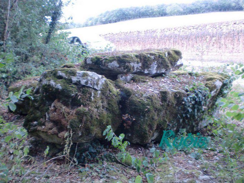 Dolmen de la Pierre Levée ou du Bois des Chailles ou des Grouges, Saint Ciers sur Bonnieure