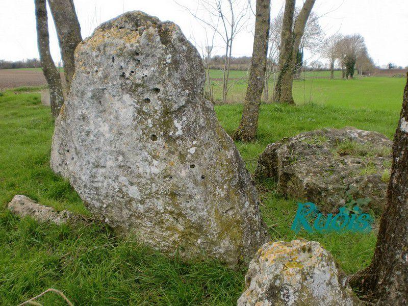 Dolmens de la Pierre Levée de la Roche, La Vallée